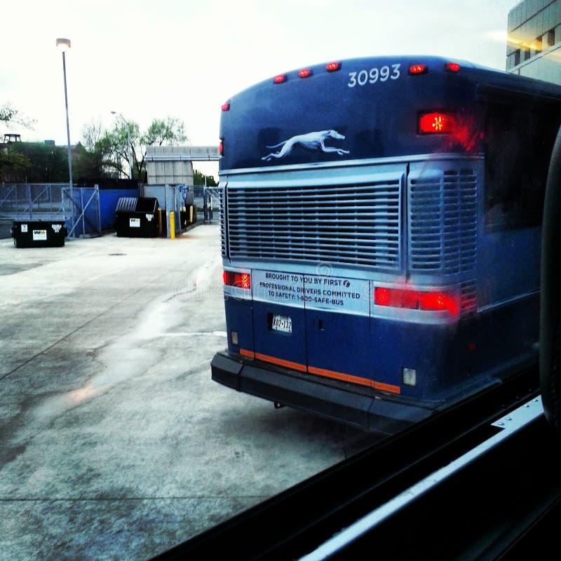 bus fotografie stock libere da diritti