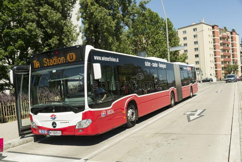Bus del pubblico di Vienna immagine stock libera da diritti