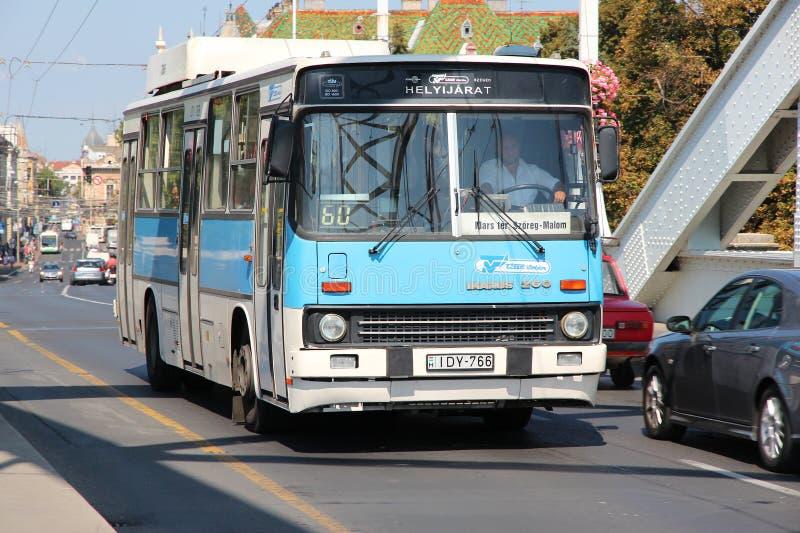 Bus di Szeged fotografia stock libera da diritti