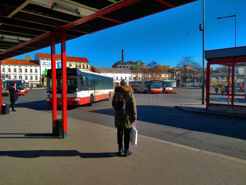 Bus di trasporto pubblico della città a Praga fotografie stock libere da diritti