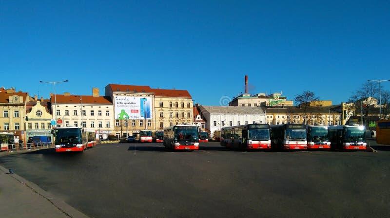 Bus di trasporto pubblico della città a Praga immagine stock libera da diritti