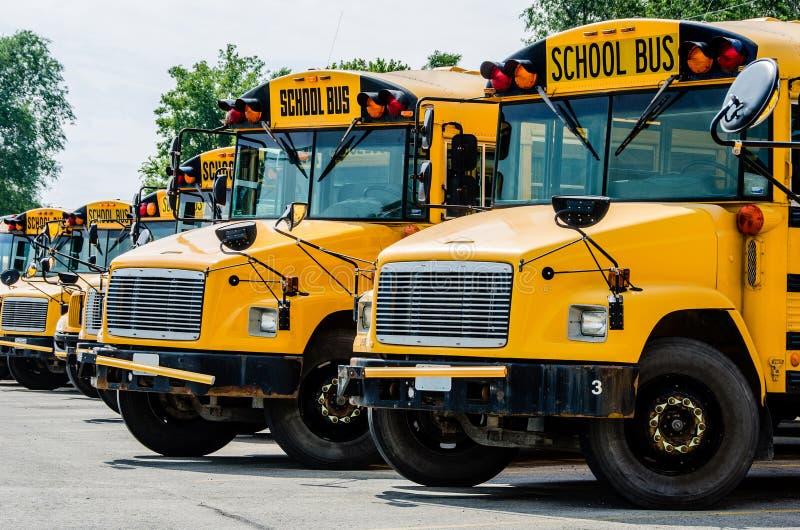bus skolan arkivfoton