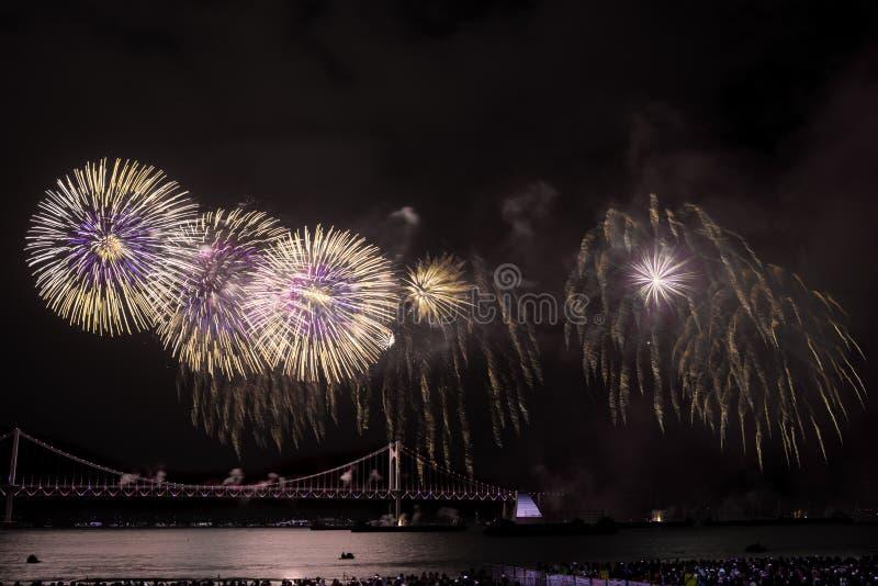 Busan fajerwerków festiwal 2016 - nocy pirotechnika obrazy stock