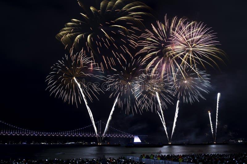 Busan fajerwerków festiwal 2016 - nocy pirotechnika zdjęcia royalty free