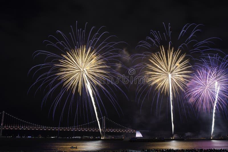 Busan fajerwerków festiwal 2016 - nocy pirotechnika zdjęcie royalty free