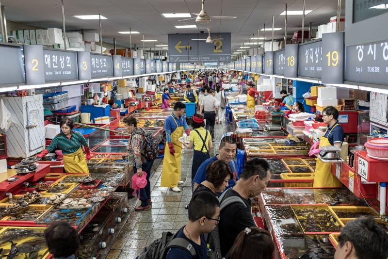 Busan fiskmarknad royaltyfria bilder