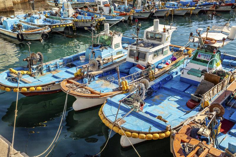 Busan Sydkorea, 01/03/2018 Mångfärgade fiskebåtar i porten bredvid fiskmarknaden N?rbild royaltyfri bild