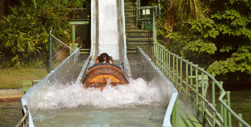 Busch trädgårdar Tampa Stanley Falls royaltyfri bild