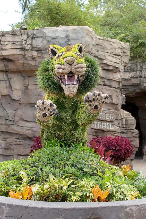 Busch trädgårdar Tiger Topiary royaltyfria foton