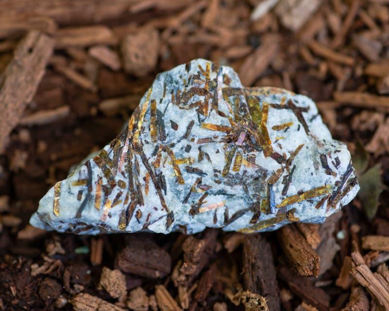Buse Astrophyllite i matrisprov från Ryssland på ett trädskäll i skogen andra namn: Aastrophyllite Asterophyll royaltyfri fotografi