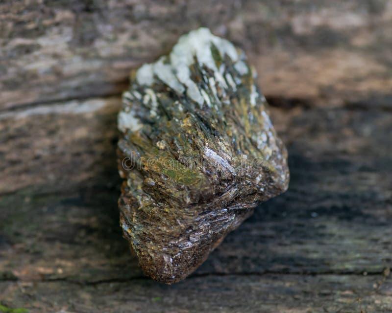 Buse Astrophyllite i matrisprov från Ryssland på ett trädskäll i skogen andra namn: Aastrophyllite Asterophyll fotografering för bildbyråer
