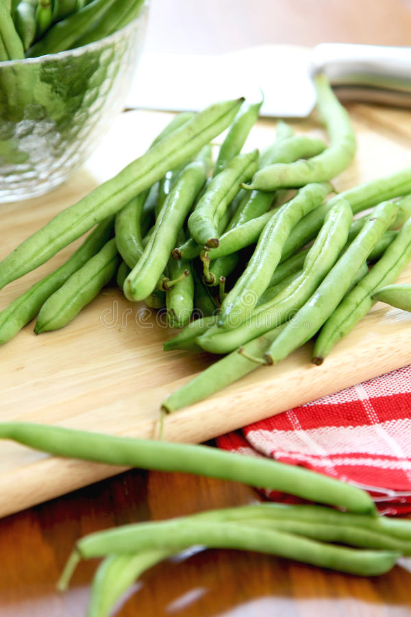 Bush bean,Green bean stock photography