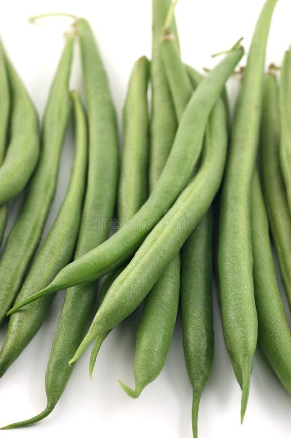 Download Bush beans stock photo. Image of food, legume, bush, long - 17798284