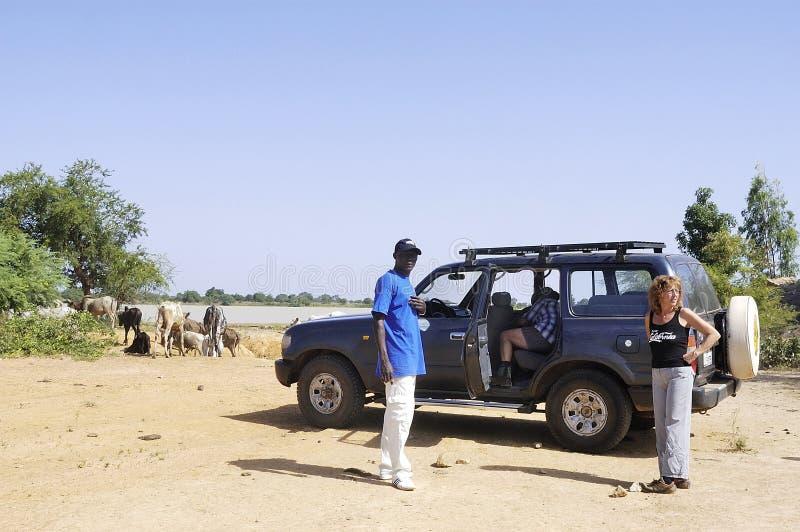 Bush in Burkina Faso lizenzfreies stockbild