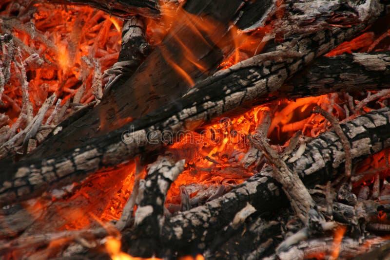 Bush-Feuer in Australien stockfotografie