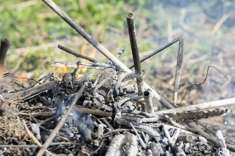 Bush on fire outdoor. Burning dry grass. Fire and smoke. background conceptual. Dangerous fires and smokes royalty free stock photography