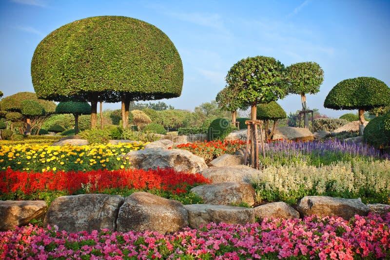 Download Bush Garden stock photo. Image of flower, park, summer - 23373422