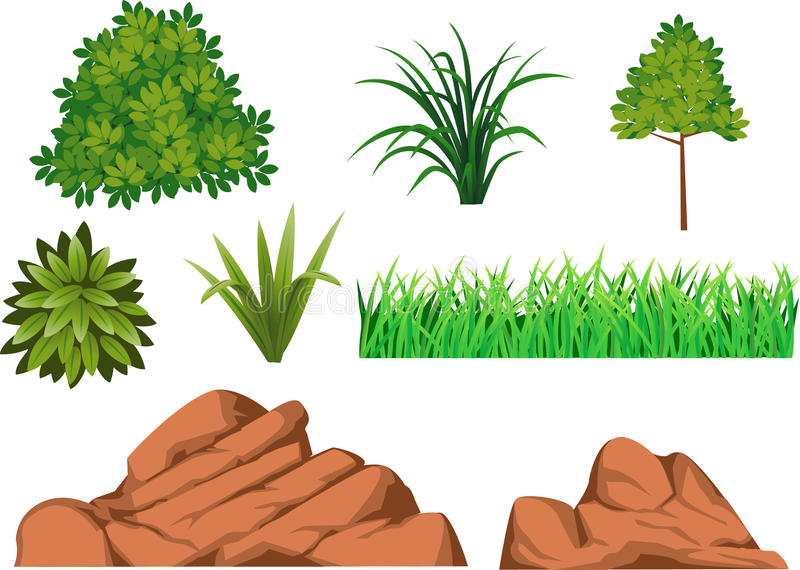 Download Bush, grass, and rock stock vector. Illustration of bright - 14553520
