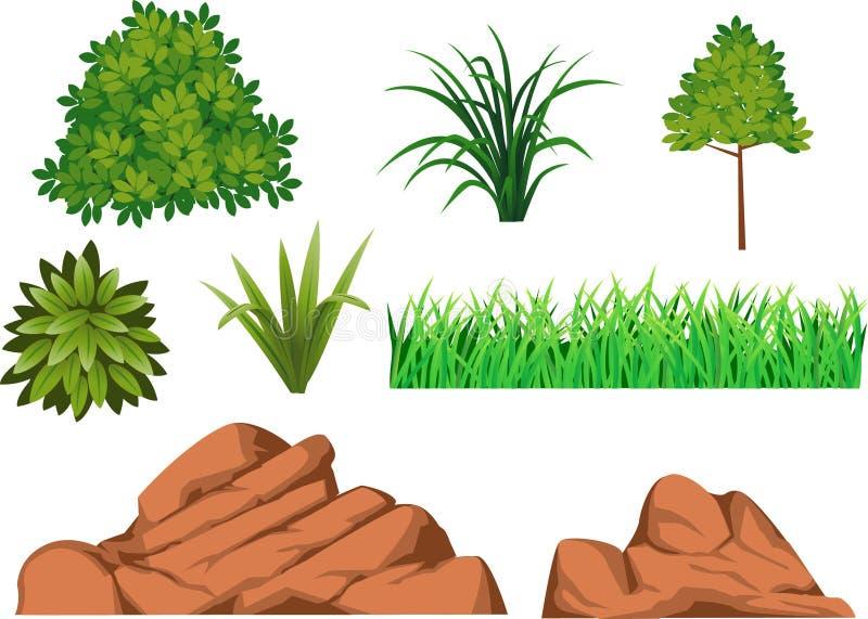 Bush, grass, and rock