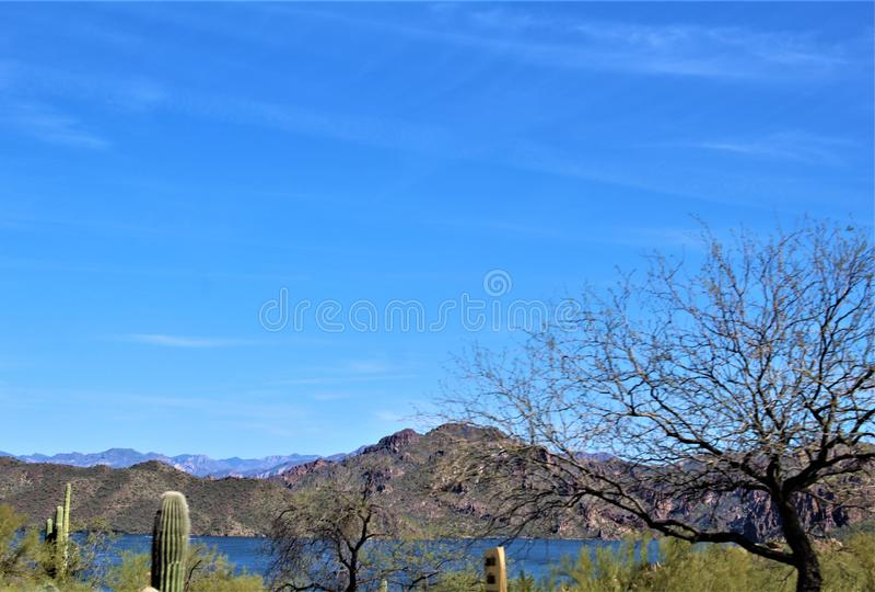 Bush huvudväg, Saguaro sjö, Tonto nationalskog, Maricopa County, Arizona, Förenta staterna royaltyfria foton