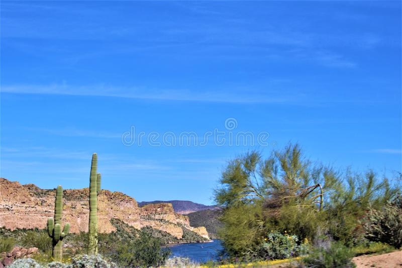 Bush huvudväg, Saguaro sjö, Tonto nationalskog, Maricopa County, Arizona, Förenta staterna royaltyfria bilder