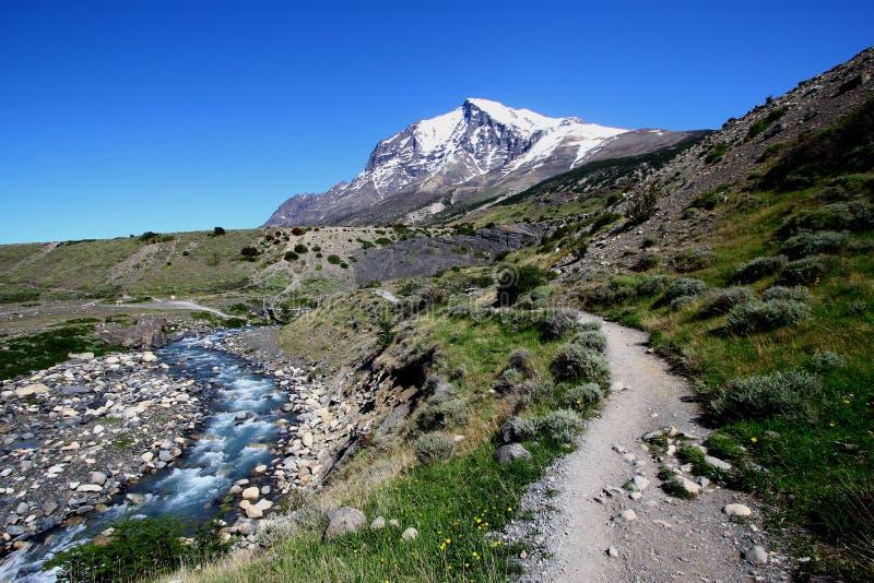 Bush marchant dans le patagonia photos stock