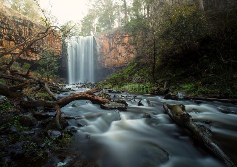 Bush vattenfall arkivbilder