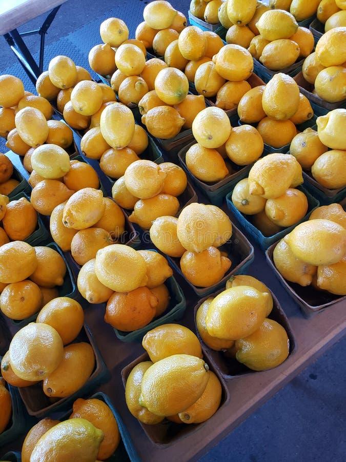 Bushell лимонов стоковые изображения