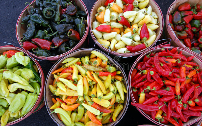 Bushels of Chiles. Bushesl of ripe chiles for sale at a farmer's market royalty free stock photos