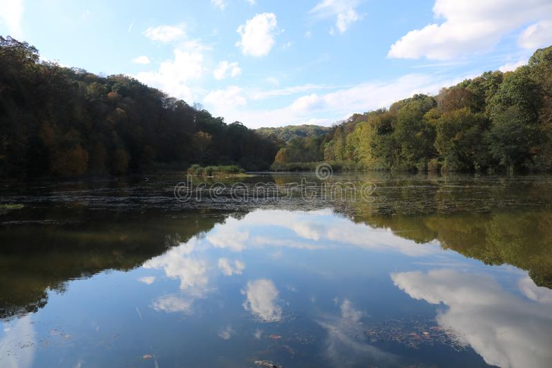 bushers镇定垂直构成湖moutain反射的反映日落的结构树 库存照片