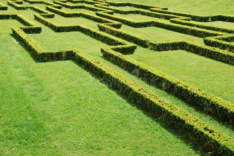 Download Bushes stock image. Image of outdoors, garden, landscape - 14857027