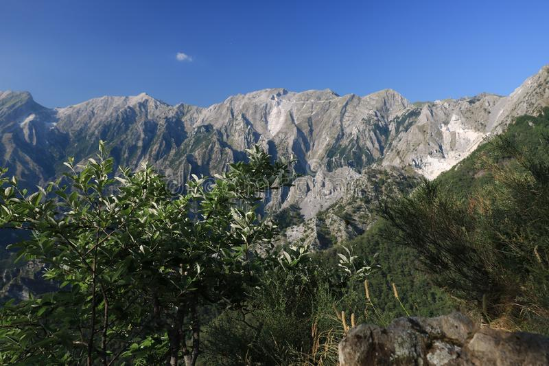 Bushes on the Apuan Alps in Versilia. In the background the moun stock photos