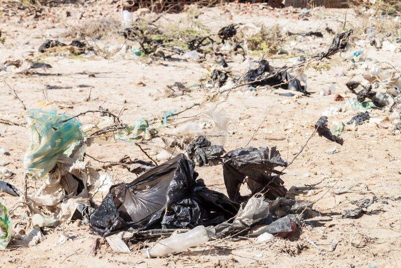 Bushes full of garbage. On La Guajira peninsula, Colombia royalty free stock photo