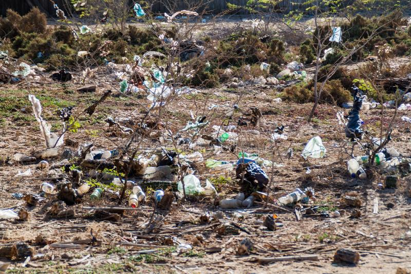 Bushes full of garbage. On La Guajira peninsula, Colombia stock photo