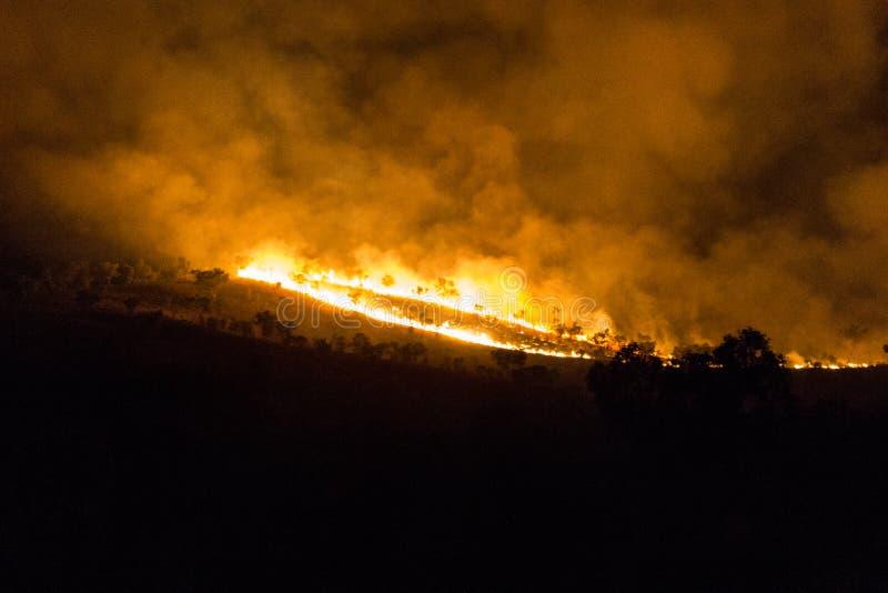 bushfire australiano de un la más forrest en la noche en el Territorio del Norte imagen de archivo