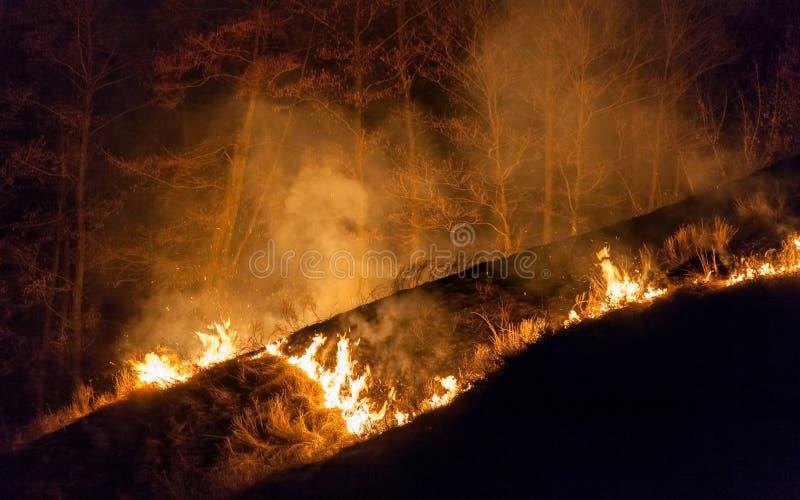 Bushfire en la noche imagen de archivo libre de regalías