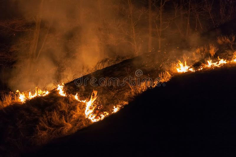 Bushfire en la noche fotografía de archivo