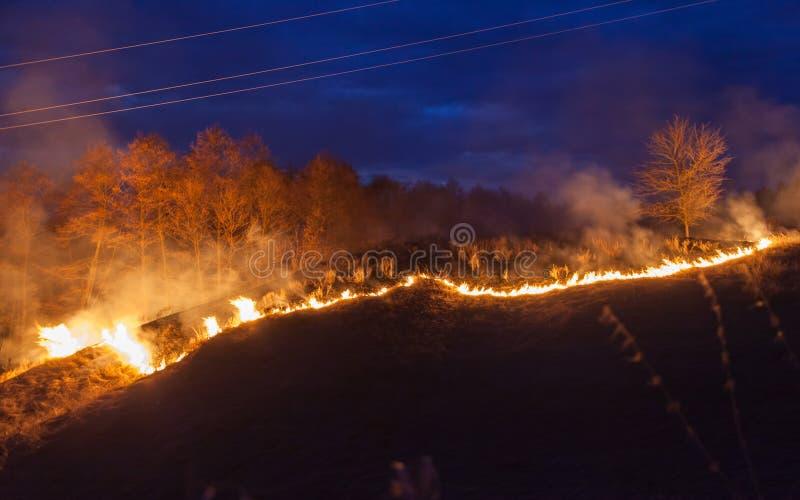 Bushfire en la noche fotos de archivo libres de regalías