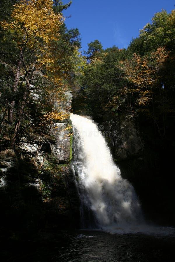 bushkill falls zdjęcia royalty free