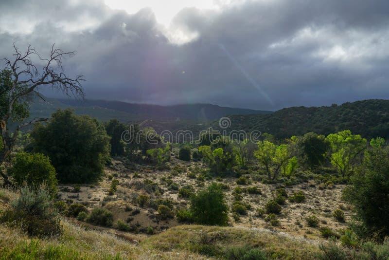 Bushland com nuvens pretas e sol que vêm através das nuvens, brilhando em uma cama de rio secada fotografia de stock