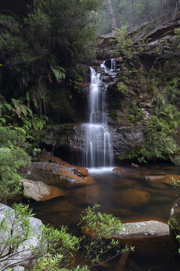 Bushland-Oase mit dem hübschen Wasserfall, der in Felsenpool stolpert lizenzfreie stockbilder