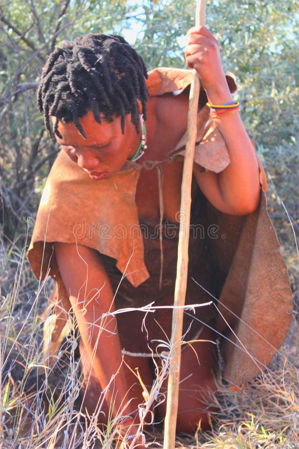 Download Bushman editorial photography. Image of male, traditional - 26524737