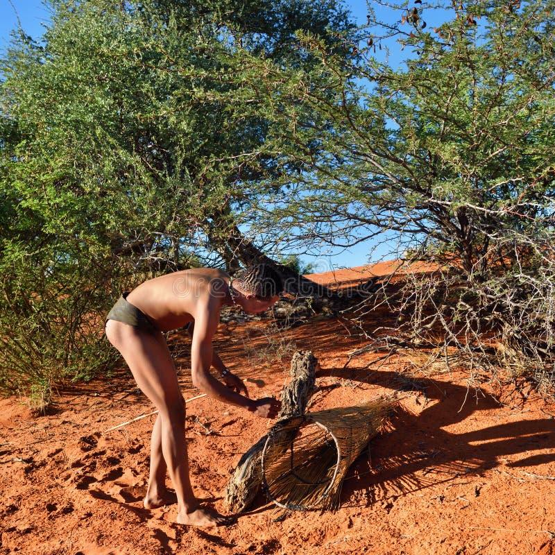 Bushman hunter Kalahari desert, Namibia. KALAHARI, NAMIBIA - JAN 24, 2016: Bushman hunter checks a trap for the porcupine. San people, also known as Bushmen are royalty free stock images