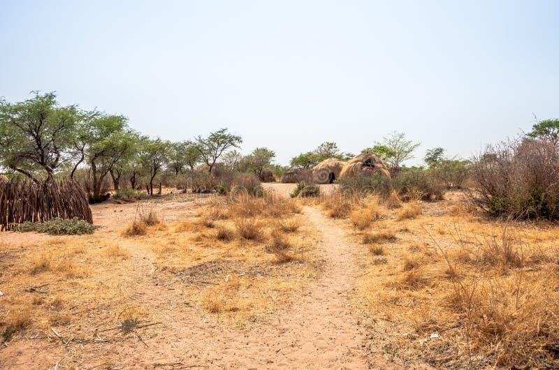 Bushmen village in Botswana royalty free stock images
