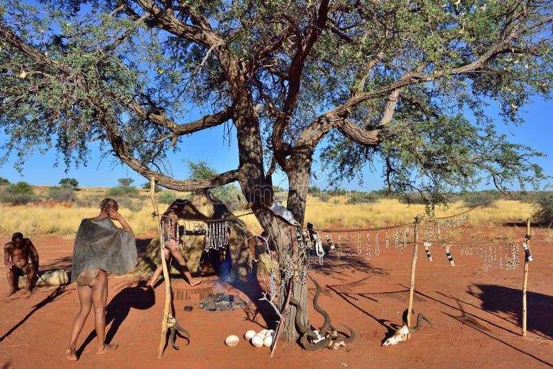 Bushmen village, Kalahari desert, Namibia. KALAHARI, NAMIBIA - JAN 24, 2016: Bushmen tribe village. The San people, also known as Bushmen are members of various royalty free stock photos