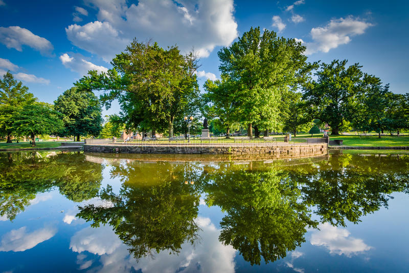 Bushnell公园的百合池塘,在哈特福德,康涅狄格 免版税库存照片