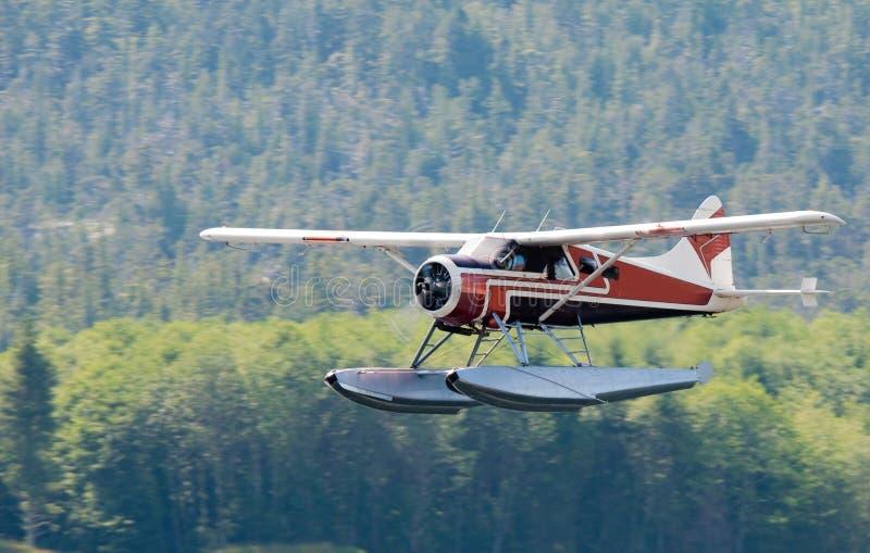 Bushplane dell'Alaska fotografia stock