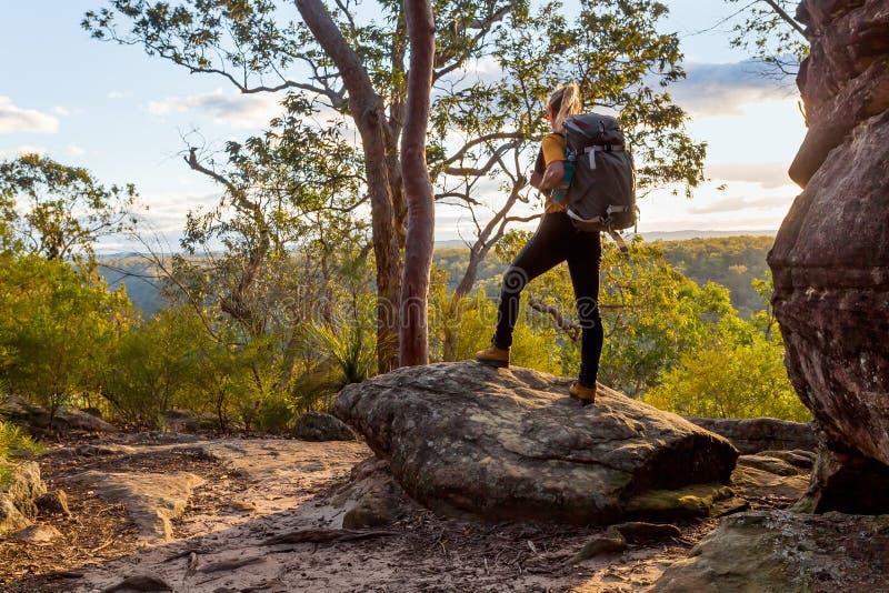 Bushwalker fêmea com a trouxa que anda no bushland australiano fotografia de stock royalty free