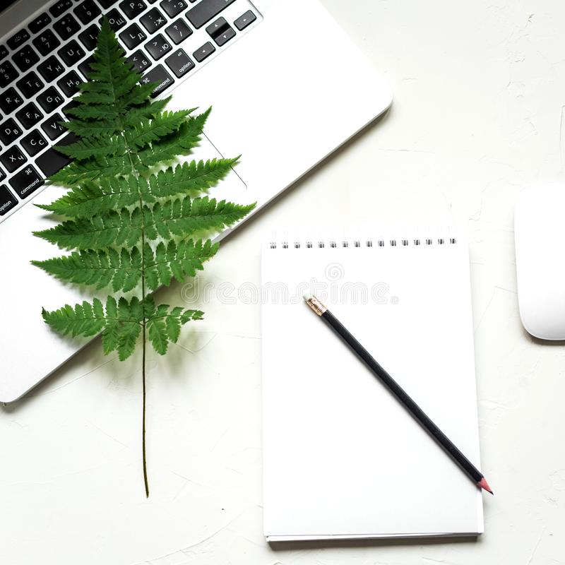 Busines flat lay of office stuff on white table royalty free stock images