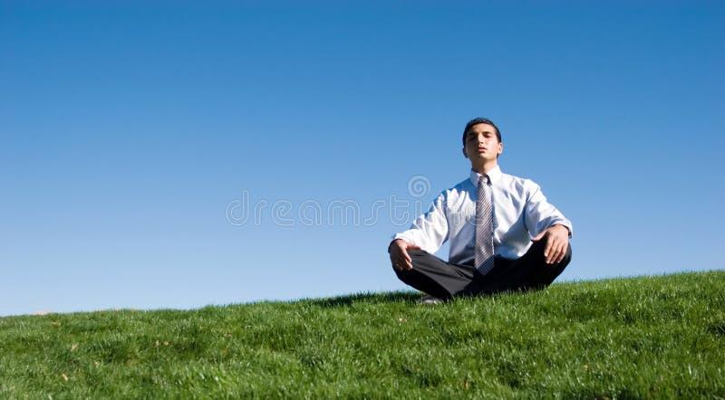 Businesman sur l'herbe verte photographie stock